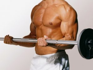 Musculin Active – cena - Ceneo