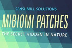 Mibiomi patches - gdzie kupić - działanie - apteka