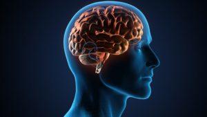 choroby mózgu