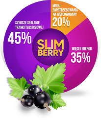 Slimberry - czy warto - producent - efekty