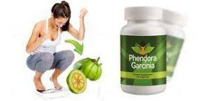 Phendora garcinia - Polska - cena - producent