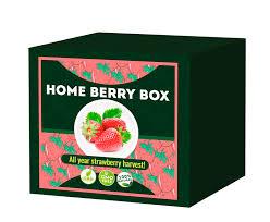 Home Berry Box - gdzie kupić - Polska - czy warto
