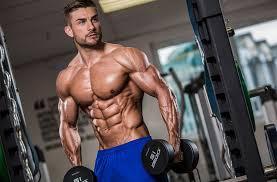 Nitro Strength - dla masy mięśniowej – allegro – cena – ceneo