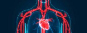 Cardio NRJ - prawidłowa praca serca – czy warto – działanie – allegro