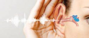 Relaton - polepszenie słuchu – czy warto – działanie – allegro